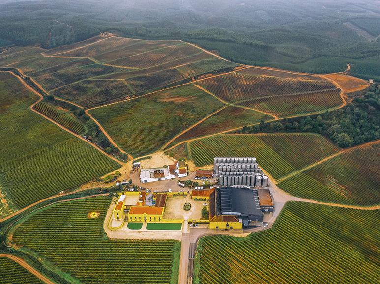 Terroir - Quinta do Gradil - Aerial View
