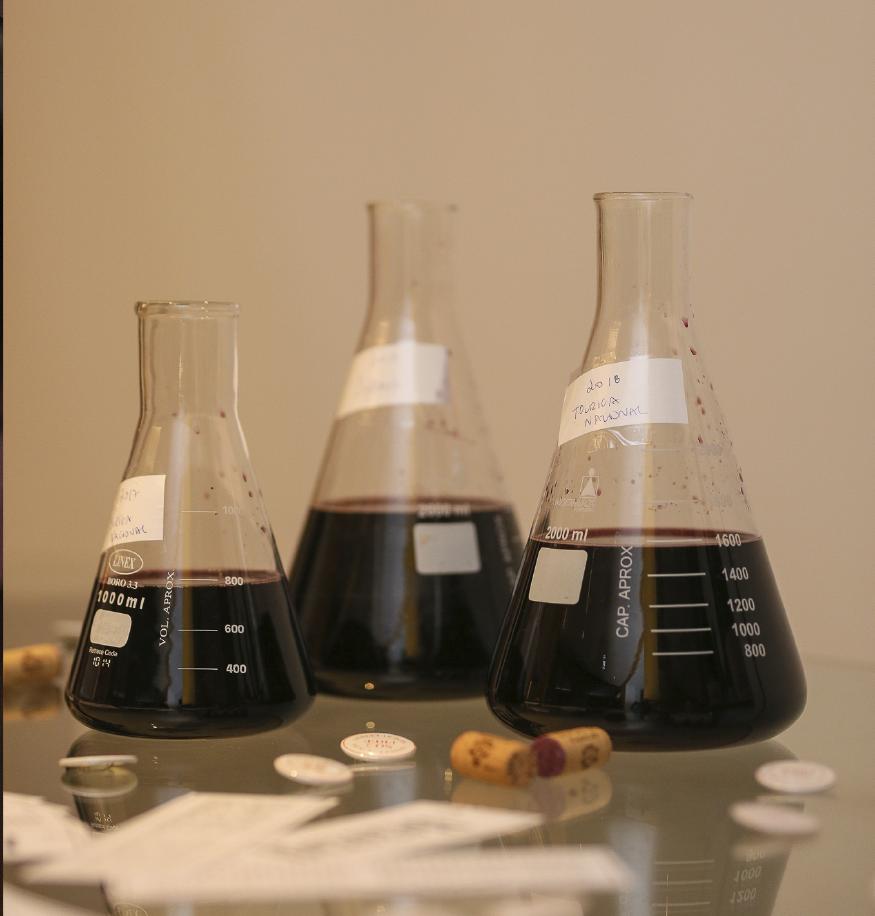 Atelier para fazedores de vinho