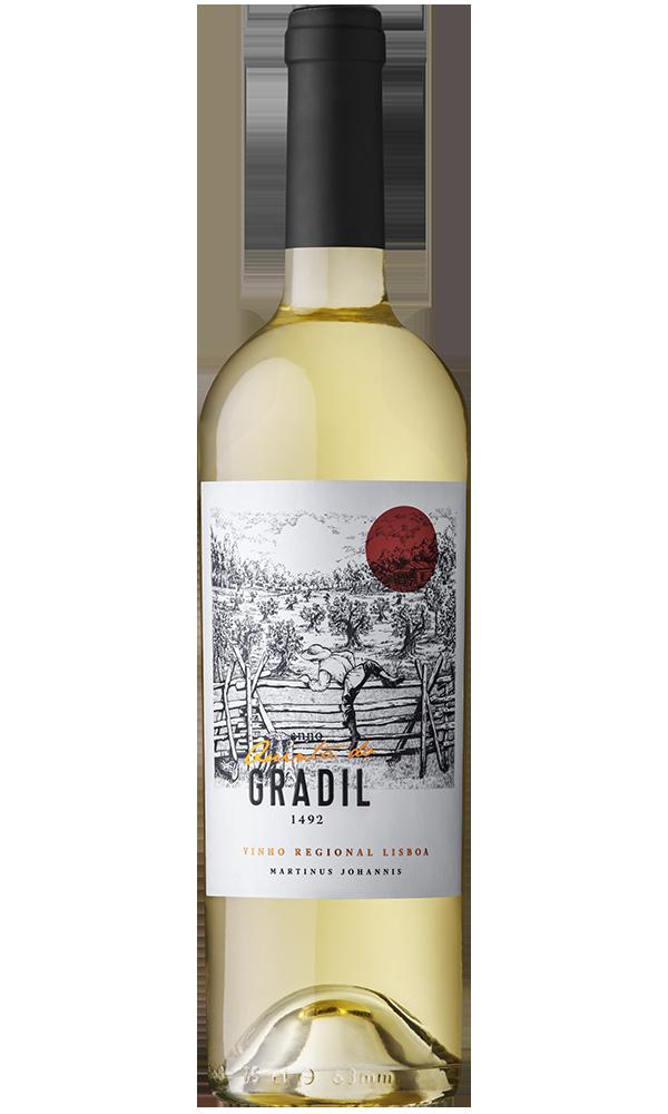 White Wine Martinus Johannis
